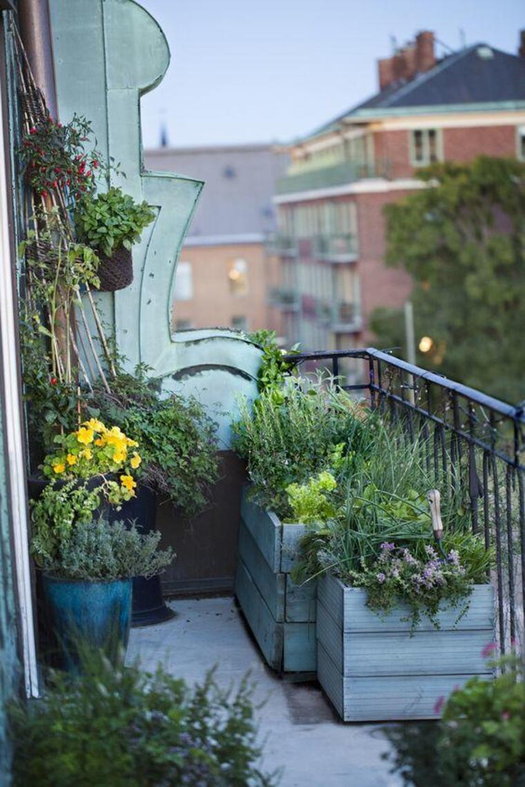 Mesmo num espaço realmente pequeno, pode ser criado um verdadeiro jardim de ervas