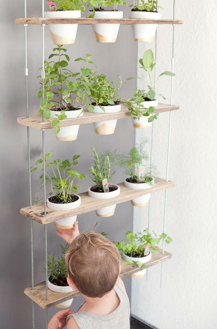 Os seus filhos podem ajudá-lo a cultivar ervas em casa - é divertido!