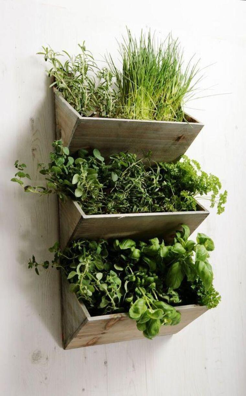 Se cultivares ervas verticalmente, pouparás muito espaço