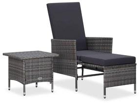 310233 vidaXL 2 pcs conjunto lounge de jardim c/ almofadões vime PE cinzento