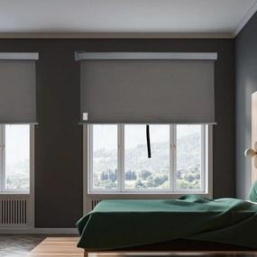 Outsunny Toldo Privacidade para Varanda Vertical e Horizontal 160x250 cm Cinza