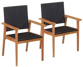44079 vidaXL Cadeiras de exterior 2 pcs vime PE preto e castanho