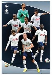 Painéis de Parede Tottenham Hotspur Fc  TA5861