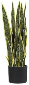Planta artificial em vaso 63 cm SNAKE PLANT
