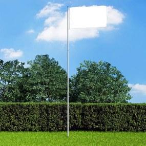 146070 vidaXL Mastro de bandeira telescópico 6 m alumínio